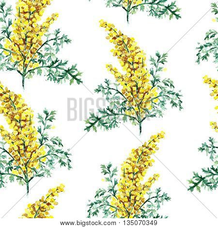 Hand drawn watercolor botanical illustration of the wormwood plant. Wormwood drawing isolated on the white background. Medical herbs illustration, herbarium. seamless pattern. vector