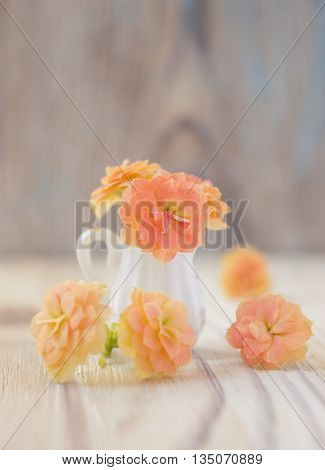 Kalanchoe bouquet in miniature, diminutive jug. Macro close-up photo with soft focus, bouquet of kalanchoe flowers. Rustic colored wooden background