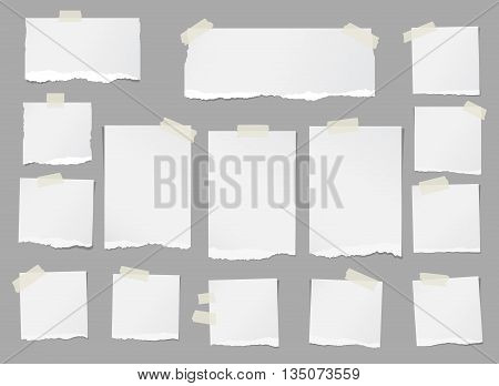 Ripped white blank note paper are stuck on gray background.