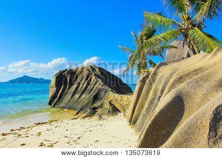 Cove Beach Beauty