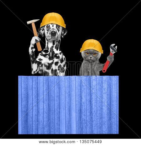 dog and cat builders holding tools in their paws -- isolated on black