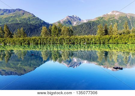 Serenity lake in tundra in Alaska