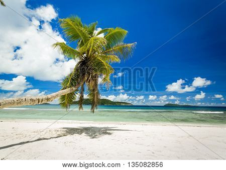 Beautiful view of a tropical beach in La Digue, Seychelles