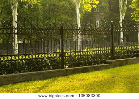 Metal fencing and lawn in the light of sunset.