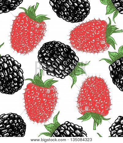 vector hand-drawn seamless background with raspberry and blackberry