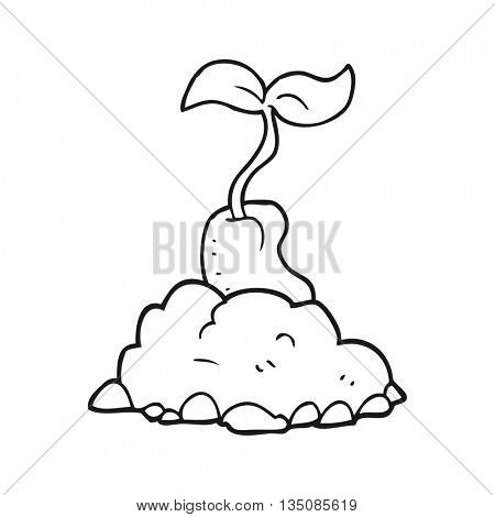 freehand drawn black and white cartoon sprouting seed