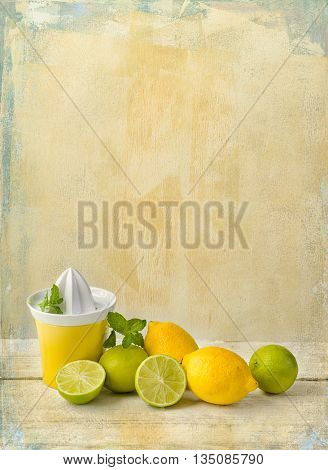 Citrus fruit still life against a grunge textured background