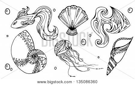 Set of outline seashells fish and jellyfish decorated boho pattern. Vector element for your creativity