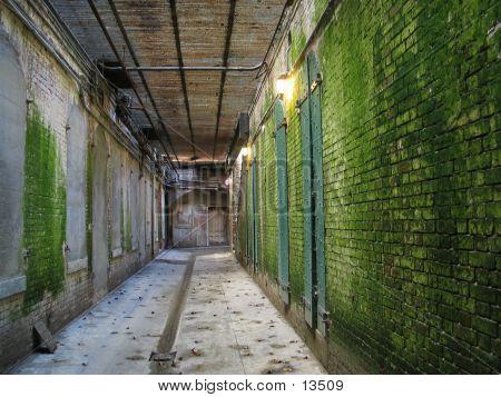 Tunnel, Alcatraz, Green