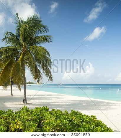 Paradise beach on a tropical caribbean island