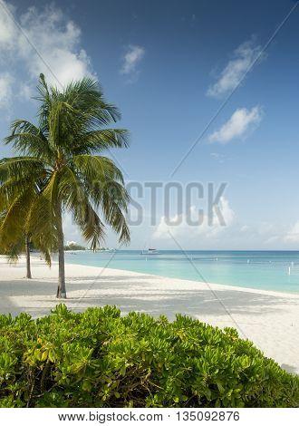 Seven Miles Beach on Grand Cayman Island