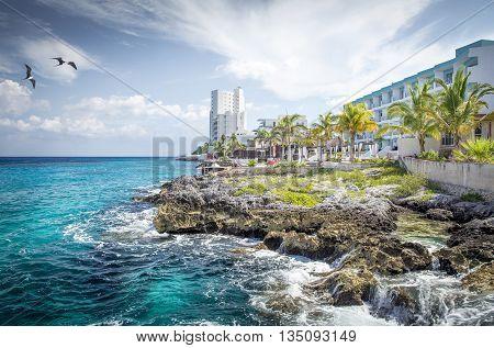 Beautiful coast of Cozumel island in Mexico