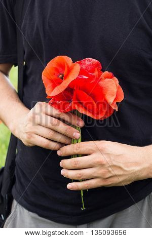 bouquet of red poppies in man hands, black t-shirt on background
