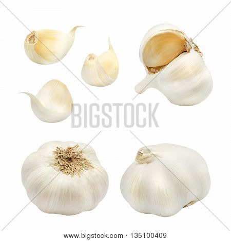 Set of bulb and clove of garlic isolated on a white background. Design element for product label, catalog print, web use.