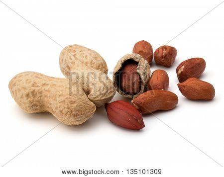 Opened and whole peanut or groundnut pod isolated on white background close up