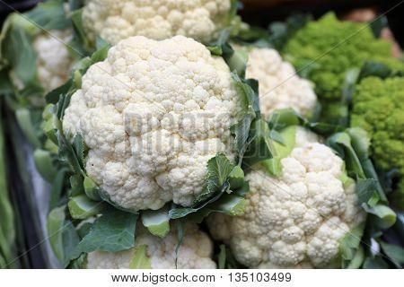 Fresh organic Cauliflower on Farmers Market in Italy