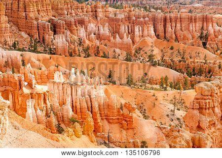 natural landmark Bryce Canyon National Park in Utah USA