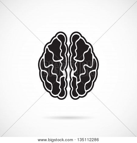 Brain Grey Vector Icon isolated over white