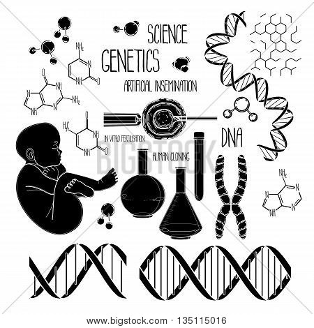 Graphic genetic research set. Vector medical and science collection isolated on white background