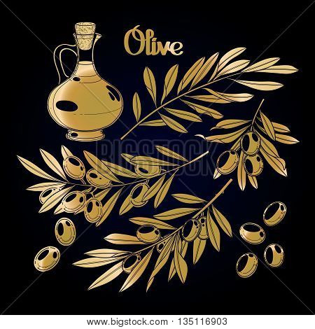 Graphic olive collection. Olives on the branches. Olive oil in the glass bottle. Vector natural design in golden colors