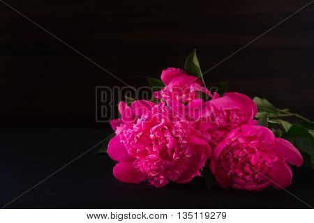 bouquet of of peonies pink flowers on dark blurry background. darkened photos. Shallow depth of field.