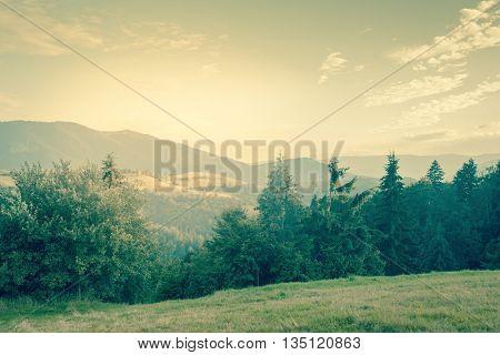 Sunny day is in mountain landscape - vintage style toned. Carpathian, Ukraine, Europe