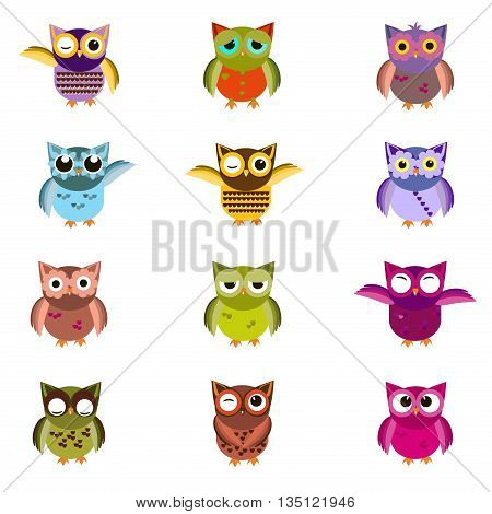 Cute vector owl characters showing different species include screech owl, long-eared owl, snowy owl, great horned owl, barn owl and great grey owl. Owl icons vector illustration. Cartoon owl design.