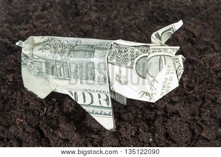 Pig origami folded from hundred dollar bills on the black earth symbolizing agriculture