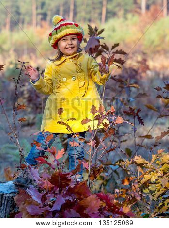 Funny Baby Girl Staying on Wooden Stock in Autumnal Forest Bright Casual Clothing Yellow Coat Colorful Hat