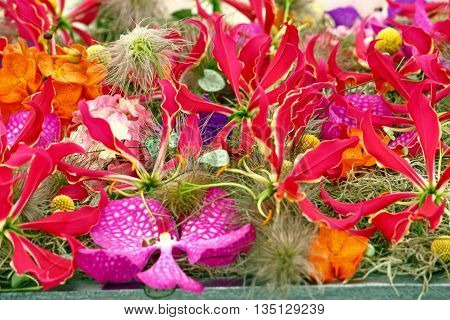 Decoration of mix of red flowers natural background