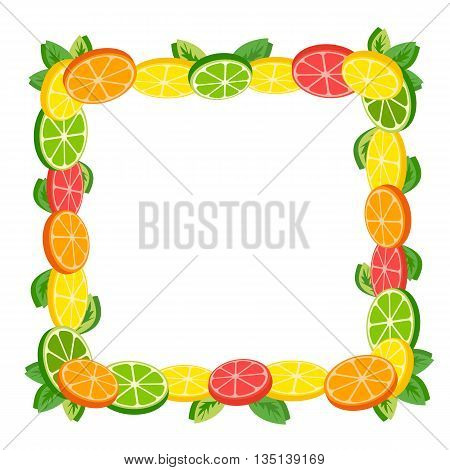 Citrus Fruits. Sliced lemon, lime. Orange and grapefruit. Organic natural fruits. Frame from Tropical citruses. Dieting food concept. Vector Illustration