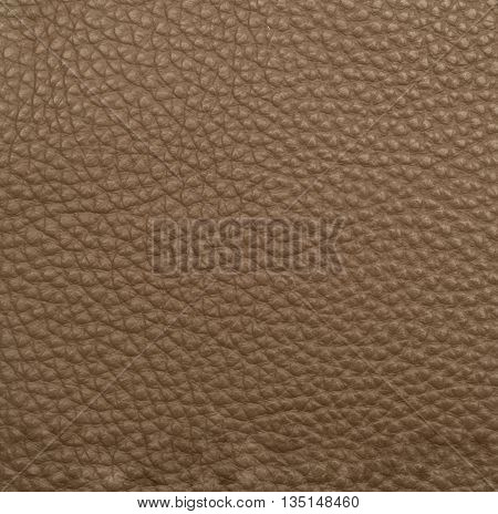 Brown leather macro shot texture for background