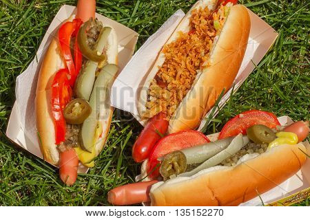 Grilled sausage with mustard, ketchup, fried onions, pickled cucumbers and fresh tomatoes and relish on a picnic