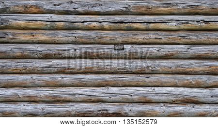 Close up of old unpainted weathered log wall background