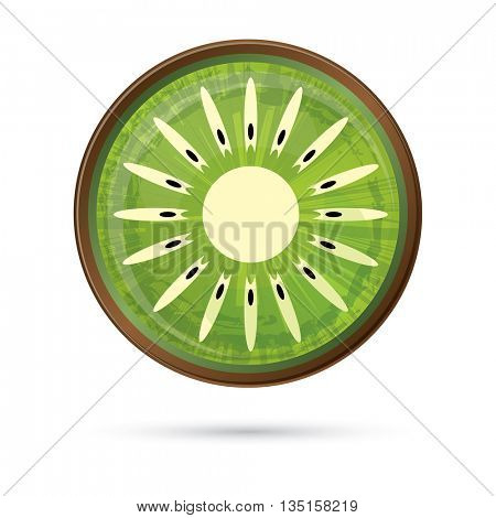 Kiwi Icon Isolated on White. Vector Illustration. Green Kiwi with Shadow