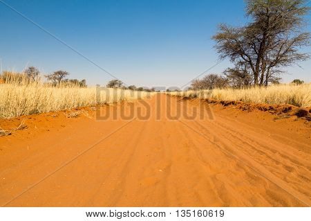 Sand Road In Namibia, Africa