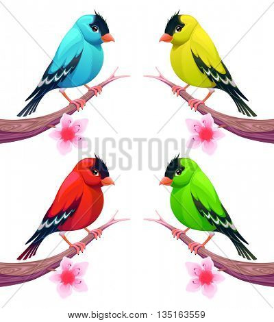 Group of birds in different color tones. Vector cartoon isolated characters.