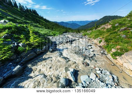 Beautiful stream of the mountain river