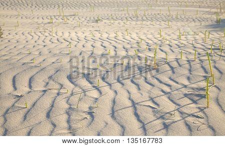 Sand And Wind Pattern