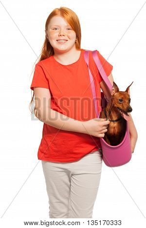 Beautiful red girl carries red miniature pinscher in the bag waist up portrait isolated on white