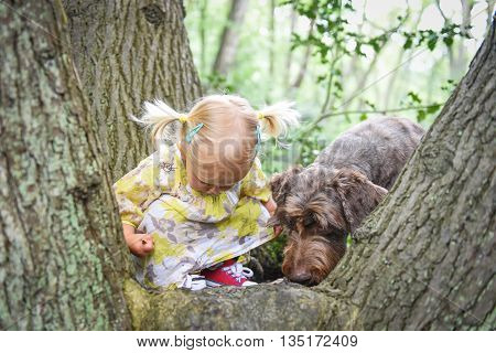 Cute 2-years Old Girl Playing With Her Dog