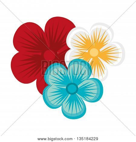 white blue and red flowers over isolated background, vector illustration