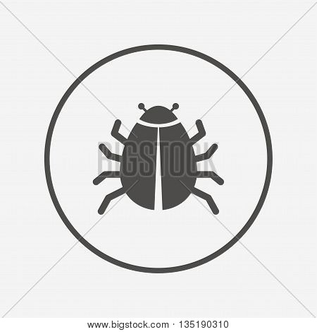 Bug sign icon. Virus symbol. Software bug error Flat bug icon. Simple design bug symbol. Bug graphic element. Round button with flat bug icon. Vector