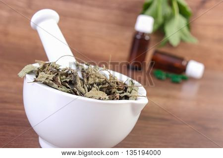 Dried Lemon Balm In Mortar And Medical Capsules, Choice Between Pills And Alternative Medicine