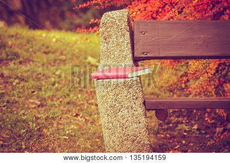 Book left on bench. Autumnal park with abandoned item. Nature outdoor vegetation relax scenery fall concept.