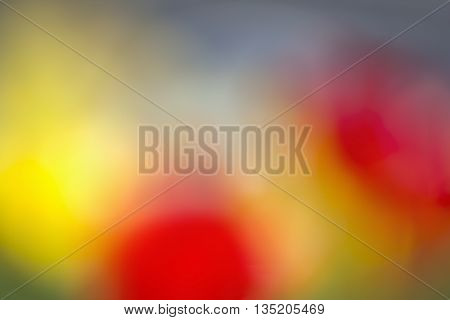 Colored Background from spots of blurred flowers of tulips