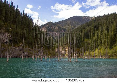 Kaindy Lake in Tien Shan mountain system Kazakhstan