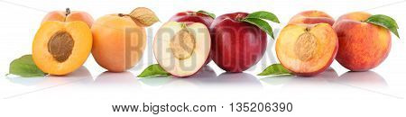 Peach Nectarine Apricot Peaches Nectarines Fruit Fruits Isolated On White