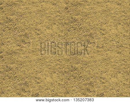 Seamless Tileable Texture -  Grass Meadow Sepia