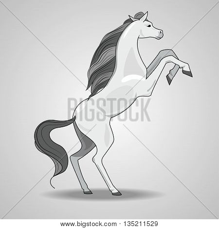 illustration with the image of a white rearing horse